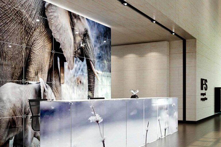 exhibition reception glass